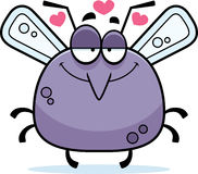 Little Mosquito in Love Stock Photography