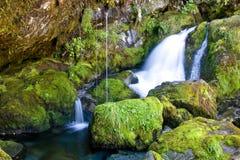 little mossy vattenfall Arkivbilder