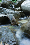 A little mountain river. Small mountain river flowing through the rocks Royalty Free Stock Photos