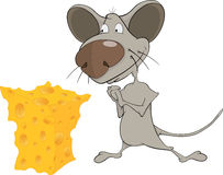 Little mouse and cheese cartoon Stock Photography