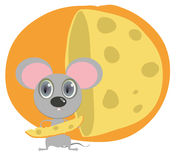 Little mouse hold peace of cheese Stock Image