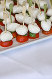 Little mozzarella tomatoes and basil Royalty Free Stock Photography