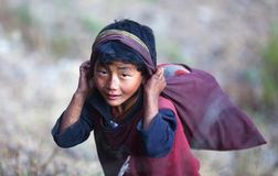 The little nepalese porter Royalty Free Stock Images