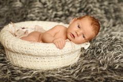 Little newborn baby is in the basket sleeping in blanket, lying. On bed stock photography