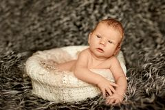 Little newborn baby is in the basket sleeping in blanket, lying. On bed royalty free stock photography