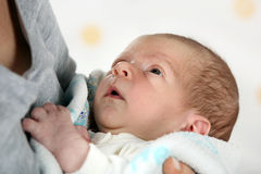 Little newborn baby boy Royalty Free Stock Image