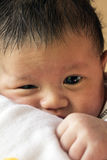 Little newborn baby boy Royalty Free Stock Image