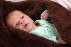 Little newborn baby boy one month old Royalty Free Stock Photos