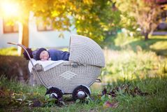 Little newborn baby boy, sleeping in old retro stroller in fores. T, autumn time, wrapped with scarf and knitted hat. Posed baby in retro pram, infant sleeping Royalty Free Stock Photo