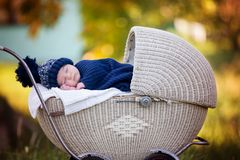 Little newborn baby boy, sleeping in old retro stroller in fores. T, autumn time, wrapped in scarf and knitted hat. Posed baby in retro pram, infant sleeping in Royalty Free Stock Photo