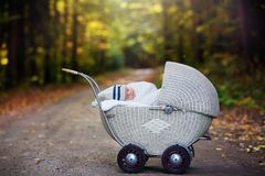 Little newborn baby boy, sleeping in old retro stroller in fores. T, autumn time, wrapped in scarf and knitted hat. Posed baby in retro pram, infant sleeping in Stock Photography