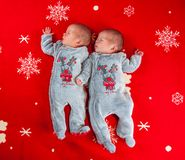 Little newborn baby boys, twin brothers. Stock Photo
