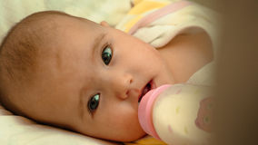 Little newborn baby drinking milk from a bottle Stock Image