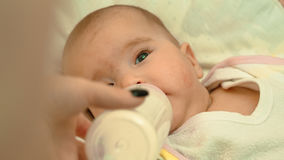 Little newborn baby drinking milk from a bottle Royalty Free Stock Photos