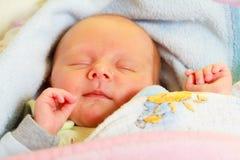 Little newborn baby girl 24 days sleeps Stock Image