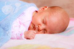 Little newborn baby girl 24 days sleeps Stock Images