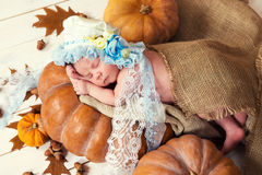 Little newborn baby girl in a lace bonnet  like Cinderella sleeping on a pumpkin.  Royalty Free Stock Images