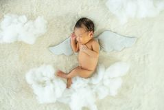 Little newborn baby is sleeping on white bed with wing accessory and fluffy pandas royalty free stock photo