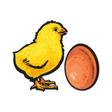 Little newborn chicken and whole brown egg, sketch vector illustration Stock Photo