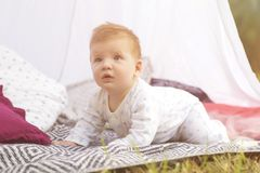 Little newborn infant baby boy kid on a plaid in park. Summer sunset. Copy space royalty free stock image