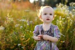 Little nice baby walking in a meadow Stock Image