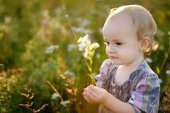 Little nice baby walking in a meadow. Little nice sweet baby walking in a meadow Royalty Free Stock Image