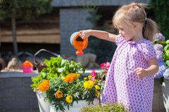 Little nice girl watering flowers with a watering Royalty Free Stock Images