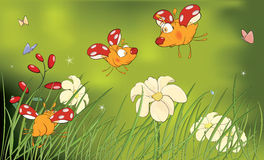 Ladybirds and flower glade cartoon Stock Images