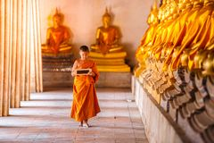 Little novice reading and studying blackboard with funny in old temple, Ayutthaya Province royalty free stock image