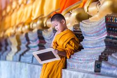 Little novice reading and studying blackboard with funny in old temple Stock Images