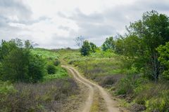 Little Off-road in the forests. The Little Off-road in the forests Royalty Free Stock Photography