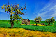 Little old house on the plains HDR Stock Image