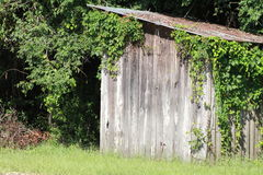 Little Old Shed Royalty Free Stock Images