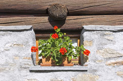 Little old window Royalty Free Stock Photos