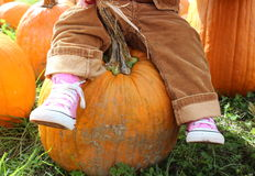 Little one sitting on a big pumpkin Stock Images