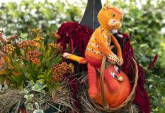Little orange pumpkin and toy cat in a rattan basket stock image