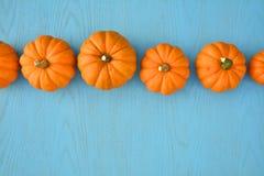 Little orange pumpkins on blue background Royalty Free Stock Photo