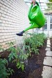 Little organic garden. Little organic/bio/permaculture garden Royalty Free Stock Image