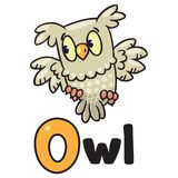 Little owl for ABC. Alphabet O. Children  illustration of little funny owl sitting on the branch of an oak tree. Alphabet O Stock Photos