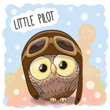 Little Owl Pilot Royalty Free Stock Image