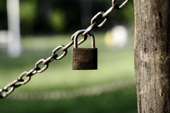 Little padlock hanging on chains. Photo was taken in city park Palic Serbia stock photography