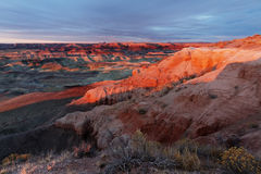 Little painted desert Royalty Free Stock Image