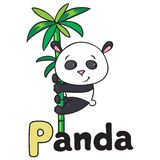 Little panda on bamboo, for ABC. Alphabet P Royalty Free Stock Image