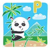 Little panda on bamboo. Alphabet P Royalty Free Stock Photography