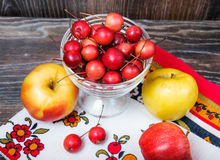 Little Paradise apples and the usual large apples Royalty Free Stock Images