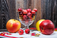 Little Paradise apples and the usual large apples Stock Image