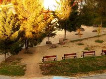 Little park with trees and benches. At sunset photographed in Gheorgheni, Romania Stock Photo