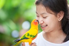 Free Little Parrot Birds Standing On Woman Hand. Asian Teenager Girl Play With Her Pet Parrot Bird With Fun And Love Stock Images - 166141814