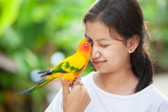 Free Little Parrot Birds Standing On Woman Hand. Asian Teenager Girl Play With Her Pet Parrot Bird With Fun And Love Stock Photo - 166141820