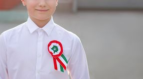 Little patriot boy with hungarian cockade closeup, march 15. 1848, revolution and war for independence Royalty Free Stock Images